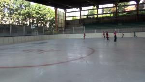 2015_01_09_pattinaggio_ghiaccio_casate