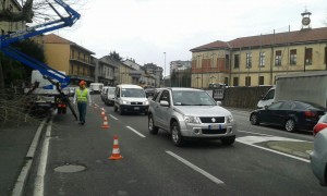 2015_02_16_traffico_napoleona_taglio_piante (2)