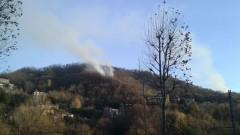 Incendio sul Monte Goj, impegnati undici mezzi dei vigili del fuoco