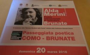 2016_03_14_passeggiata_merini