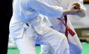 judo_waylog