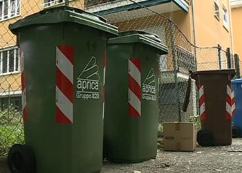 Bidoni dei rifiuti