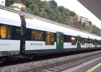 Un treno Trenord in stazione
