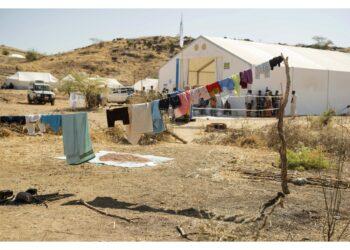 """Rapporto Amnesty denuncia """"crimini contro l'umanità"""""""