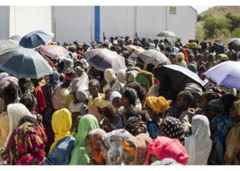 E nei vicini Stati di Afar e Amhara dall'inizio del conflitto
