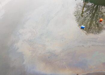 Sversamento di idrocarburi nel lago di Como