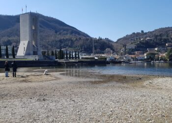 Lago di Como basso