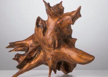 Una radice, opera caratteristica di Roberto Vallini