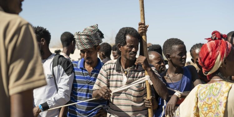 Promettono ritiro in lettera congiunta a Consiglio sicurezza Onu