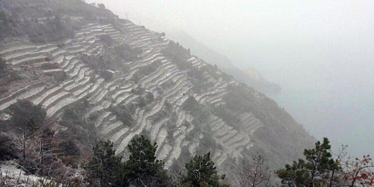 A Rapallo 123 millimetri di pioggia in 12 ore