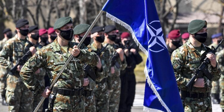 Min. Difesa: più soldati a ovest per rispondere a 'minacce' Nato
