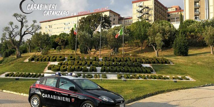 Operazione dei carabinieri nel Catanzarese
