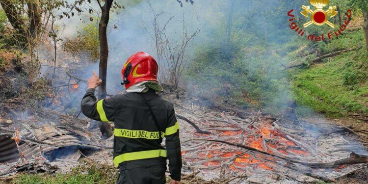 L'incendio nei boschi di Albate