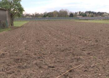 Un campo arato per le coltivazioni