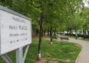 La targa per Paolo Maggi