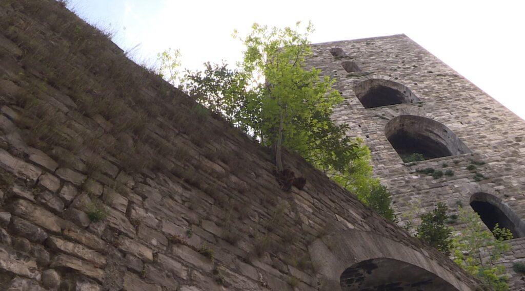 vegetazione como mura antiche