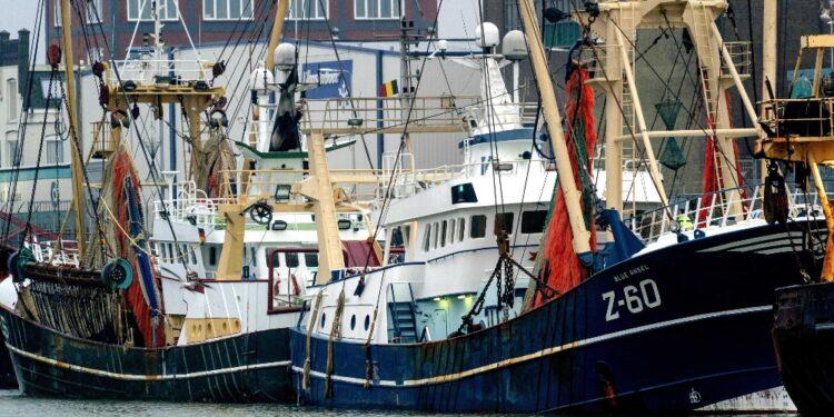 Alcuni tentano blocco porto contro limiti pesca voluti da Londra