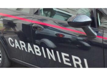Blitz dei Carabinieri nel sud Sardegna