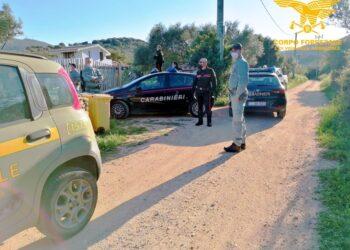 La Forestale li scopre seguendo turisti sbarcati senza test
