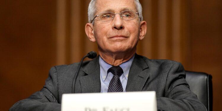 L'ambasciatore Varricchio gli conferirà l'onorificenza oggi