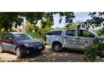 Due arresti e tre denunce