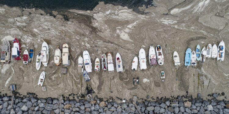 'Salveremo i nostri mari