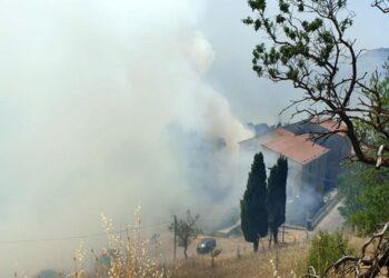 Vigili del fuoco e forestale sono impegnati nello spegnimento