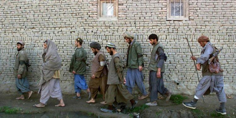 La proposta al governo in cambio liberazione di 7.000 detenuti