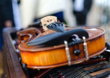 un violino