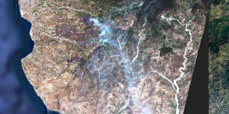 Elaborazione chiesta da Arpacal mostra i 5.400 ettari distrutti