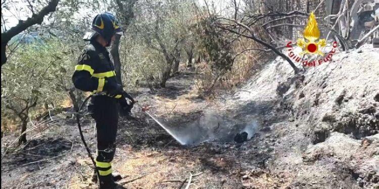 Le fiamme stanno interessando una superficie di 25 ettari