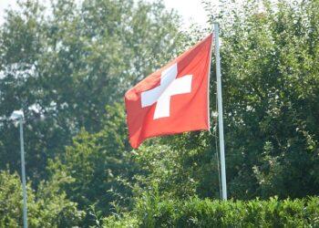 bandiera della svizzera su sfondo di alberi