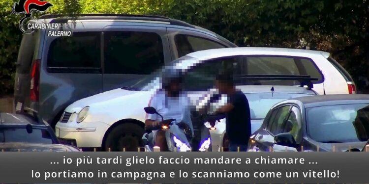 Operazione Persefone dei Carabinieri