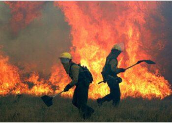 Un vigile del fuoco ha perso la vita nel rogo giovedì