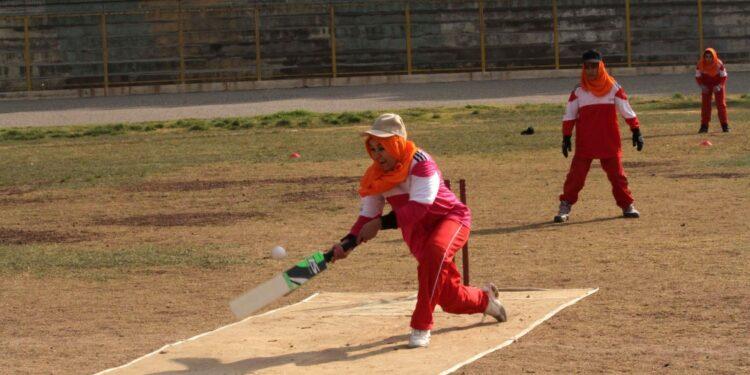 Vicecapo commissione cultura: 'Niente cricket né altri giochi'
