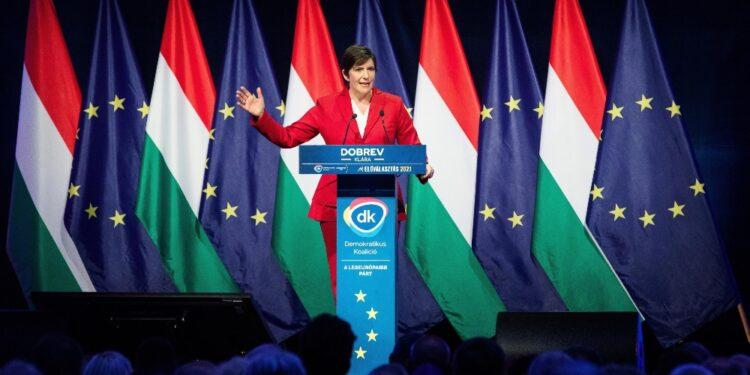Leader anti-Orban: 'Colpa del premier'. Fidesz: 'Incompetenti'