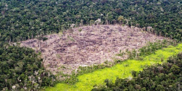 Società bloccherà le inserzioni relative alle aree protette