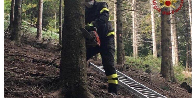 Comandante vigili fuoco